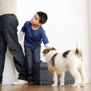 Hund og dreng